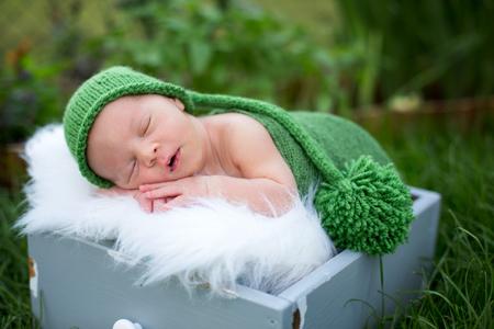 Little sweet newborn baby boy, sleeping in crate with wrap and hat, outdoors in garden Banco de Imagens