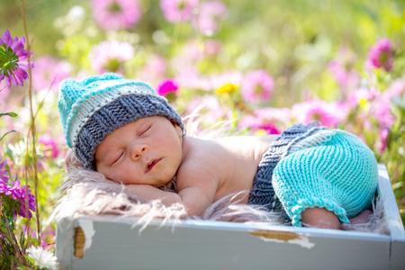 Cute newborn baby boy, sleeping peacefully in basket in flower garden Archivio Fotografico