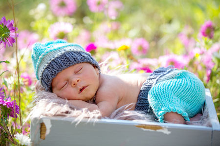 Cute newborn baby boy, sleeping peacefully in basket in flower garden Standard-Bild