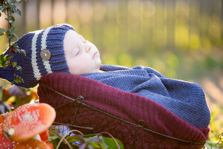 Little newborn baby boy, wrapped in scarf, lying in basket in forest, Amanita Muscaria mushrooms next to him Stock fotó