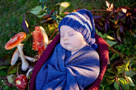 Little newborn baby boy, wrapped in scarf, lying in basket in forest, Amanita Muscaria mushrooms next to him Imagens - 87558313