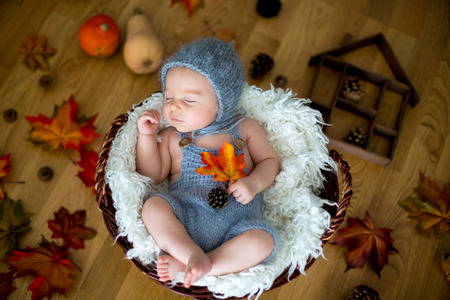 Cute newborn baby boy, sleeping with autumn leaves in a basket at home, autumn ornaments around him