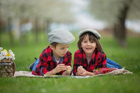 Two children, boy brothers, reading a book and eating strawberries in the park, spring blooming garden Stock Photo