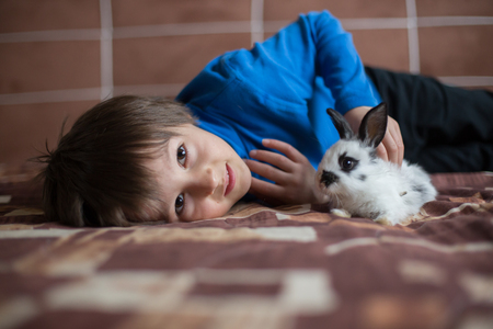 Cute little preschool boy, playing with pet rabbits at home, pets