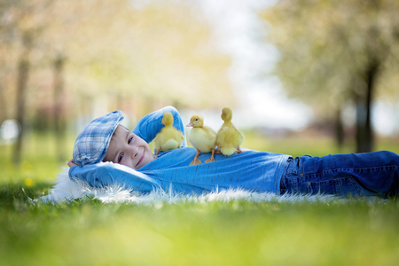 Cute little child, boy with duckling springtime, playing together, little friend, childhood happiness Stock Photo - 99247174