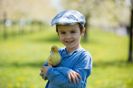 Cute little child, boy with duckling springtime, playing together, little friend, childhood happiness Stock Photo - 99247331