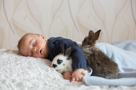 Cute little baby boy, sleeping with pet rabbits at home