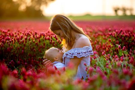 Mooie jonge moeder, haar peuter babyjongen borstvoeding in prachtig karmozijnrood klaver veld op zonsondergang, lente