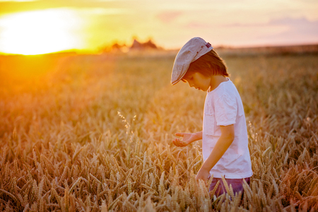 Cheerful child, boy, chasing soap bubbles in a wheat field on sunset, summertime Stock fotó