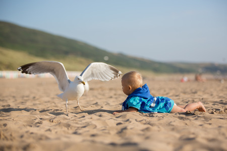 Cute baby boy, adorable child, playing with seagulls at the edge of the ocean coast Stock Photo - 107469587