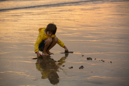 Cute beautiful child, boy playing on the beach with sand and running in the water on sunset, Devon, England