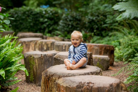 Cute toddler boy, sitting on tree trunks in forest, smiling happily