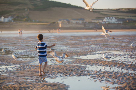 Children, beautiful boy brothers, watching and feeding seagulls on the beach on sunset Stock Photo - 107472328