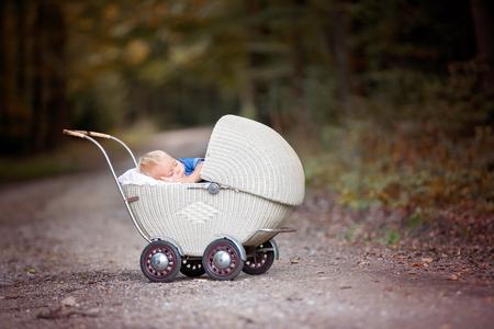 Little newborn baby boy, sleeping in old retro stroller in forest, autumn time. Posed baby in retro pram, baby sleeping, vintage stroller Imagens