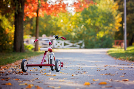Süßer Kleinkindjunge, reitendes Dreirad im Park bei Sonnenuntergang, Herbstzeit, Geschwister im Park, Genießen warnen Herbsttag Standard-Bild