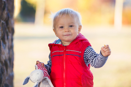 Happy little child, baby boy, laughing and playing with soothing toy in the autumn on the nature walk outdoors Stock Photo