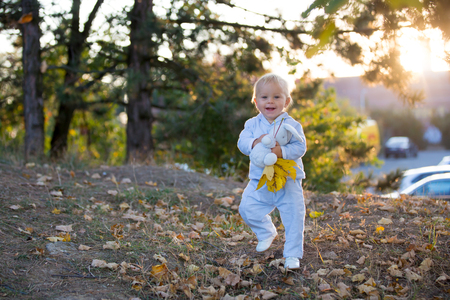 Cute blond toddler baby boy walking in autumn park with plush toy in hands, back lit