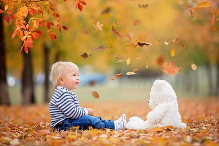 Kleines Kleinkind, das mit Teddybären im Herbstpark spielt und Blätter um sich wirft Standard-Bild