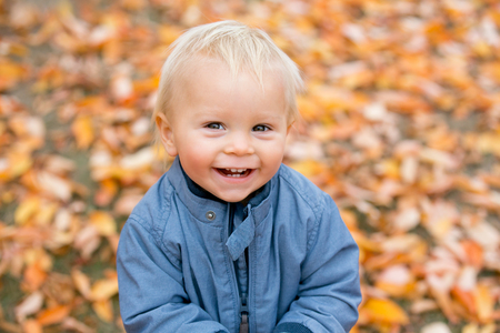 Close portrait of a sweet smiling toddler baby boy in autumn park on sunset Stok Fotoğraf