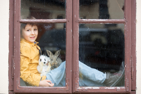 Cute little preschool boy, playing with rabbits, pets, sitting on vintage window