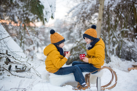 Sweet siblings, children having winter party in snowy forest. Kids friends rest outdoor at nature. Young brothers, boys, drinking tea from thermos. Hot drinks and beverage in cold weather Stok Fotoğraf