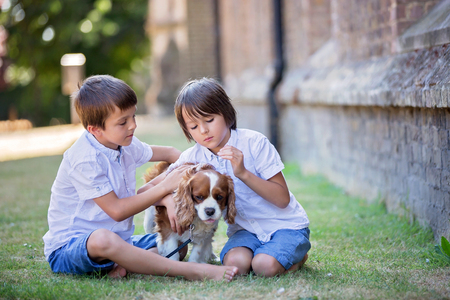 Beaugtiful preschool children, playing with sweet dog in the park, summertime