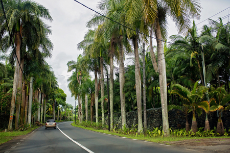 The scenic road on the island of Mauritius on sunset