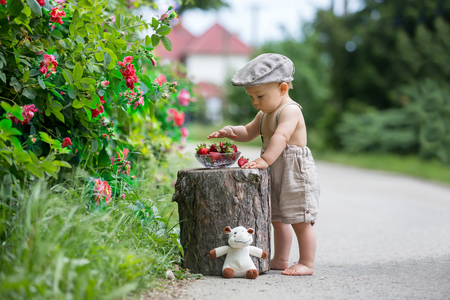 Süßes Kind, Kleinkindjunge, genießt eine Schüssel mit leckeren frisch gepflückten Erdbeeren, Sommer Standard-Bild
