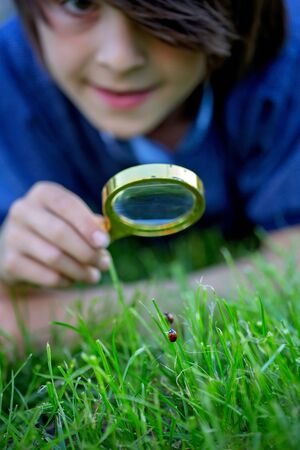 Preteen child, boy, exploring with magnifying glass, watching ladybugs in the grass 写真素材