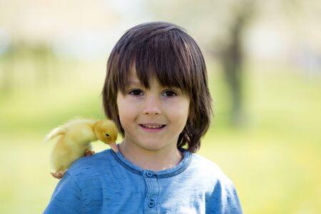 Cute little child, boy with duckling springtime, playing together, little friend, childhood happiness Stock Photo - 128934749