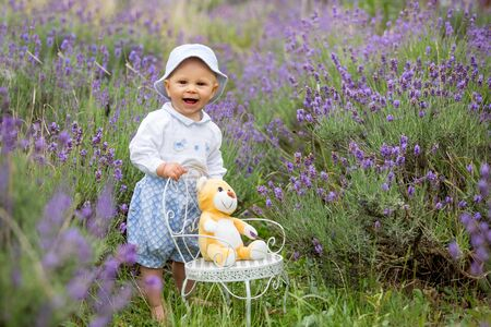 Happy smiling baby boy, sitting on vintage chair in lavender summer field