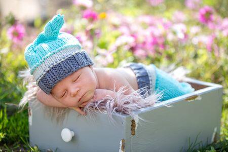 Cute newborn baby boy, sleeping peacefully in basket in flower garden Фото со стока