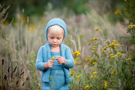 Beautiful toddler boy with handmade knitted outfit and teddy bear in a flower field, summertime