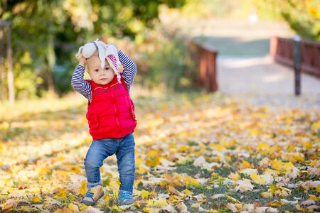 Happy little child, baby boy, laughing and playing with leaves in the autumn on the nature walk outdoors