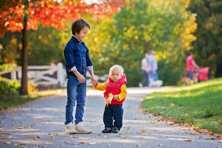 Happy little children, baby boy and his brother, laughing and playing with leaves in the autumn on the nature walk outdoors