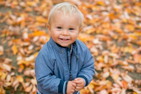 Close portrait of a sweet smiling toddler baby boy in autumn park on sunset Imagens