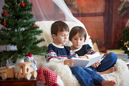 Two preschool sibling boys reading a book in armchair near Christmas tree with lights and illumination. Happy children learning and educating themselves