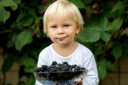 Happy child, holding blackberries, in garden, freshly gathered