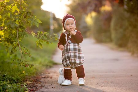Fashionable little toddler boy with knitted outfit, walking in autumn park with plush toy  in hands on sunset