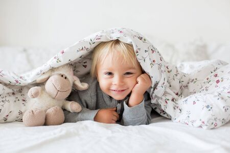 Little toddle boy, playing with teddy toy, hiding under the cover in bed, sunny bedroom