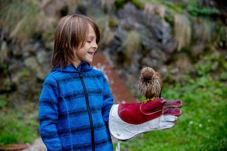 Preschool boy, child, holding eagle bird in the park, big glove on his hand