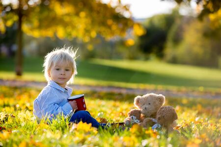 Beautiful toddler child, boy, drinking tea in the park with teddy bear friends on sunset Banque d'images