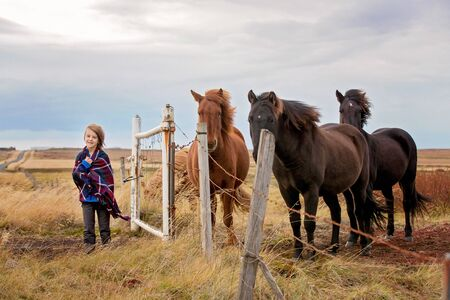 Beautiful child and horses in the nature, early in the morning on a windy autumn day in Iceland 写真素材 - 132228960