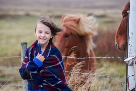 Beautiful child and horses in the nature, early in the morning on a windy autumn day in Iceland