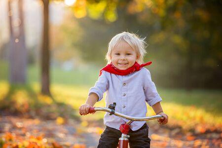 Schöner blonder zweijähriger Kleinkindjunge, der bei Sonnenuntergang rotes Dreirad im Park reitet, schöner Herbsttag