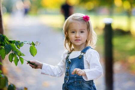 Sweet toddler baby girl, child, playing in the park with leaves on a sunny warm day
