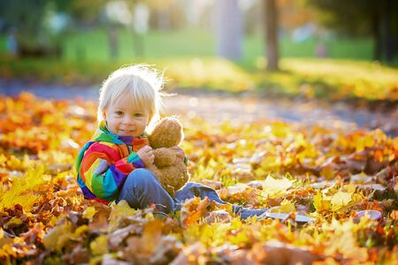 Sweet toddler child, boy, playing in the park with leaves on sunset