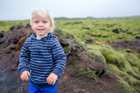 Smiling toddler child, boy, posing in front of beautiful wooly moss on a rainy day in Iceland, autumntime