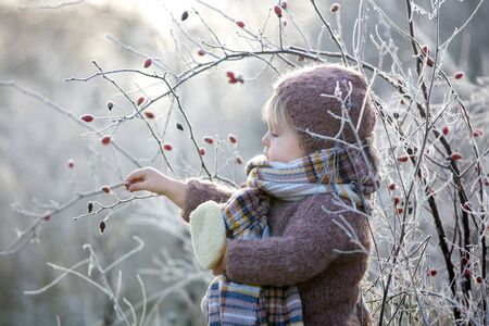 Beautiful toddler boy, dressed in knitted outfit with hat and scarf, playing in frosty morning forest with toy and cup of tea