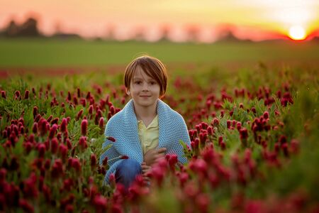 Beautiful children, brothers in gorgeous crimson clover field on sunset, springtime